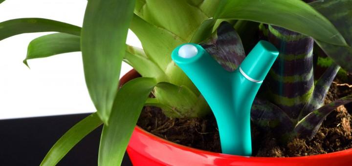 1392758208516 720x340 - Test du capteur pour plante Flower Power de Parrot
